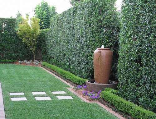 Sydney Landscaping Trends for 2019